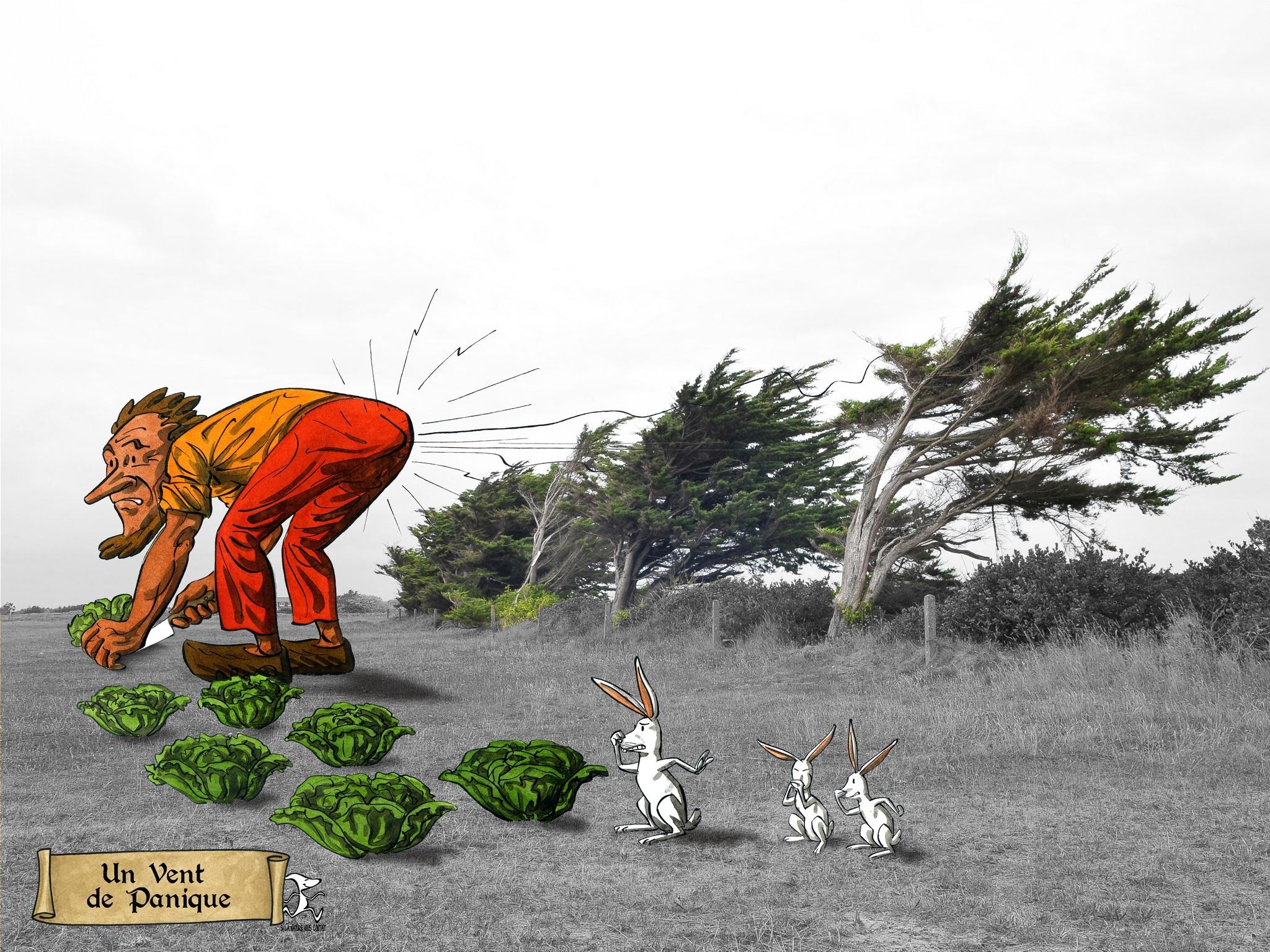 vent de panique 01 bd dessin penmarc'h dessin julien Lamanda photo damien Journée
